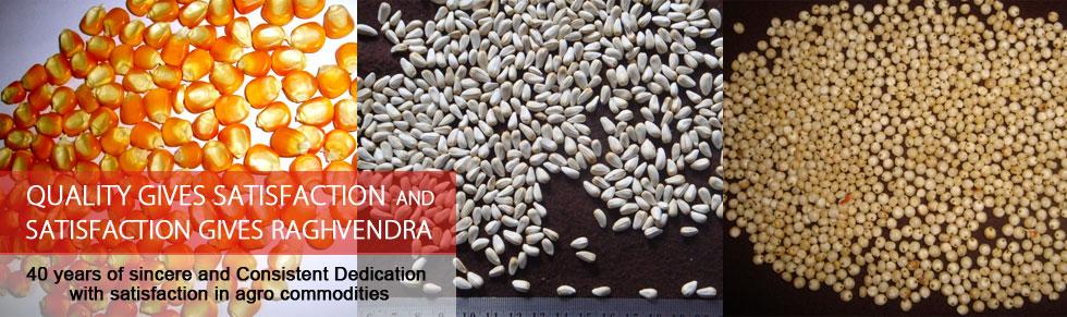 Shree Raghvendra Agro Processors Banner