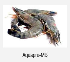 Aquapro-MB