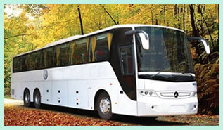 Book Luxurious AC Buses