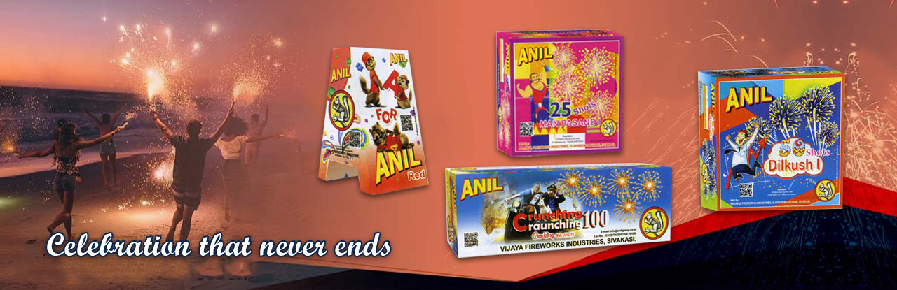 Anil Fireworks Factory