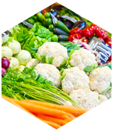 Agro and Vegetable Products