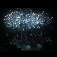 Fireworks Display Service