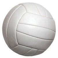 Basketball & Volleyball