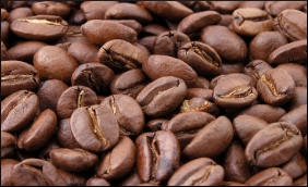 Coffee Beans food agric