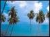 Goa.9.Thmb.jpg