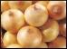 Onion.9.Thmb.jpg