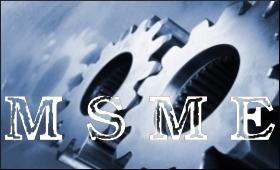 MSME.9.5.jpg