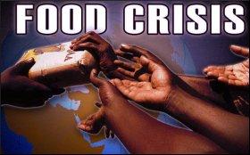 Food.Crisis.9.jpg
