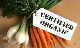 organic-product.jpg