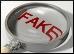 Fake.9.Thmb.jpg