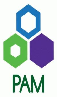 PAM ENERGY PVT. LTD.