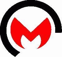 Meena Cast Pvt. Ltd.