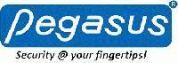 Pegasus Equipments Pvt. Ltd.