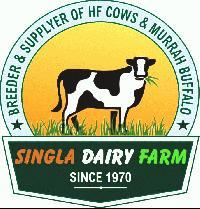 SINGLA DAIRY FARM