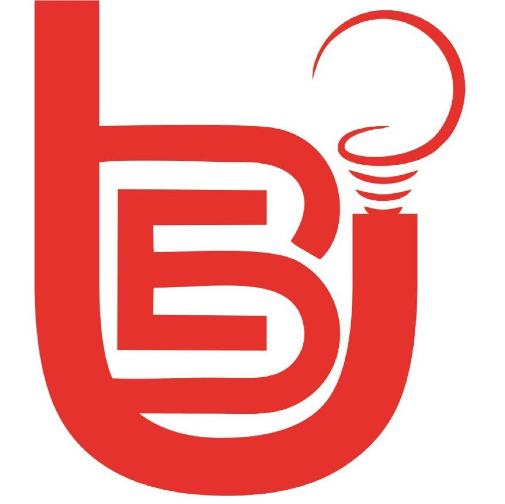 BRIGHT ELECTRIC UDYOG