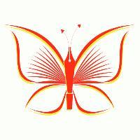 Butterfly Silk Art