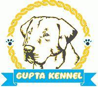 Gupta Kennel