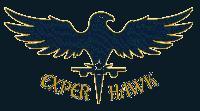 Expert Hawk Solutions