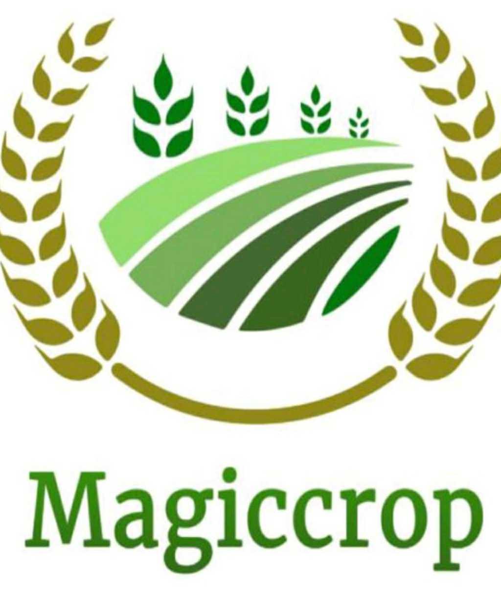 Magiccrop Business Pvt. Ltd.