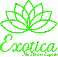 Exotica - The Flower Experts