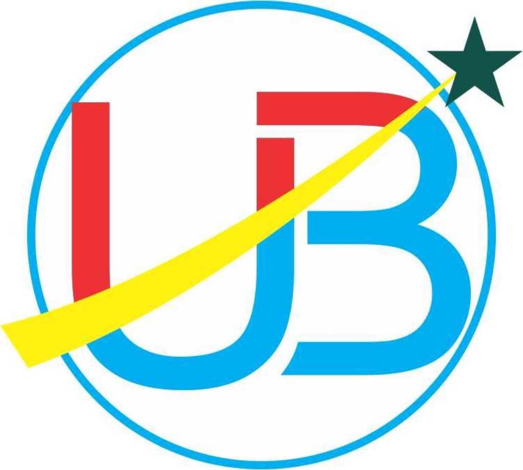 UB Chemicals
