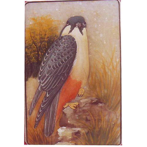 Animals Paintings Of Bird