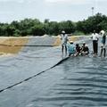 Latest Geo Membrane