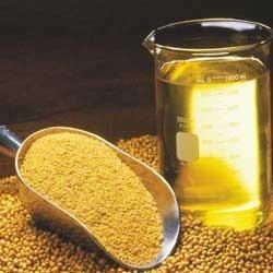Crude Soya Bean Oil