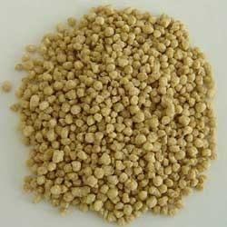 Soya Tsp (Texturised Soya Protein)