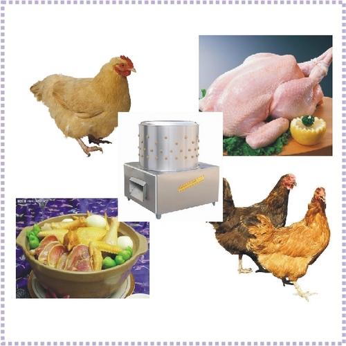 Chicken Plucking Machine/Poultry Plucker at Best Price in
