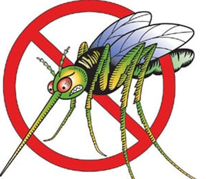 M-Pol (Cg) For Mosquito Coil