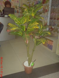 Artificial Rubber Plant