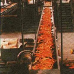 Conveyor Belts For Veg Plants