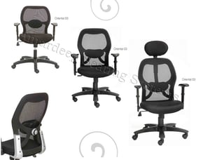 Mesh Director Chairs