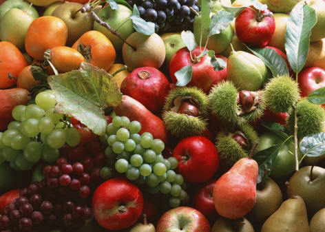Food as medicine — the answer to mounting health crises Fresh-fruits-736