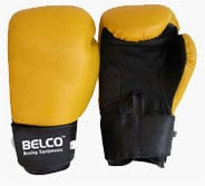 Professional Boxing Glove