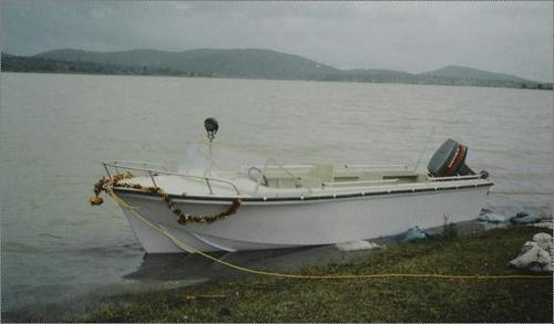 15 Persons Capacity Cruise Motor Boat