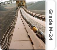 Conveyor Belt (M-24) in  Thaltej