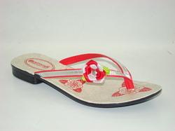 Footwear (Ladies)