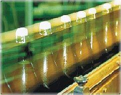 Slat Conveyor (Bottle Conveyors)