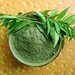 Dehydrated Curry Leaves Vegetable Powder