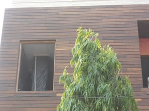IPE Outdoor Decking And Cladding