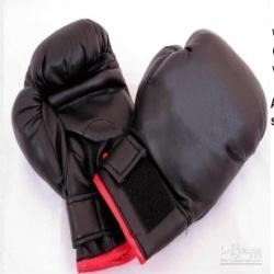 Wushu Gloves