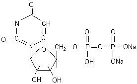 Uridine Diphosphate Disodium