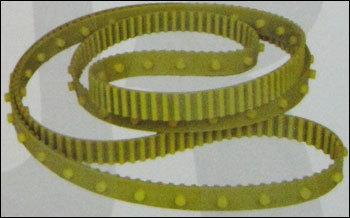Special Button Belt