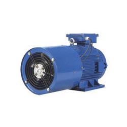 Inverter Rated Electric Motor in Vadodara, Gujarat - ELCEN MACHINES