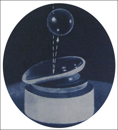Toughened Lens in  Mahakali-Andheri (E)