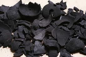 Char Coal in  Sachin
