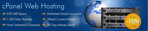 cPanel Shared Hosting Service in  Midc Satpur