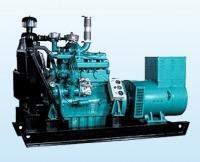 Bio Gas Power Generator